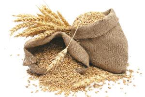 dieta-cereale-integrale